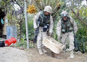 soldiers lift lid off rat hole; picture of palm tree with yellow fruit in background